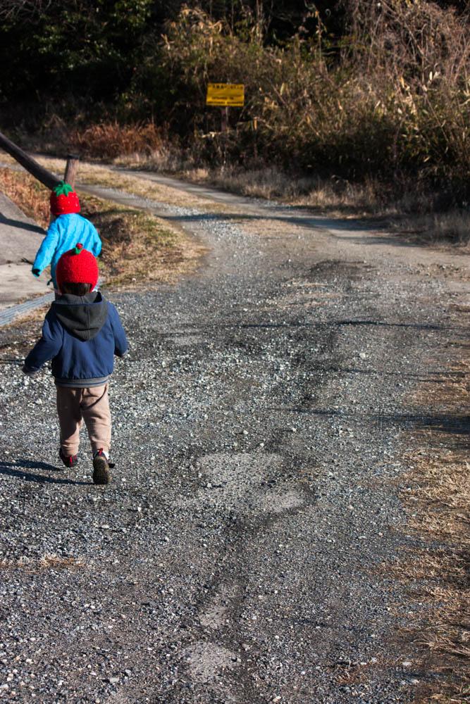 森へと走る健康児