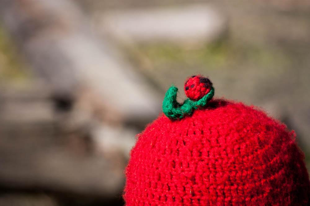 冬の外遊びの必需品健康児のてんとう虫のニット帽